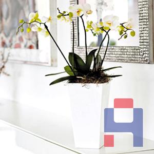 玻璃钢花盆花器厂