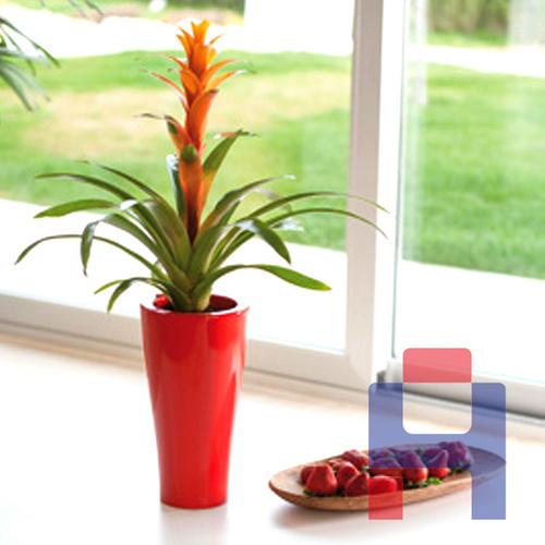 玻璃钢绿化花盆花器